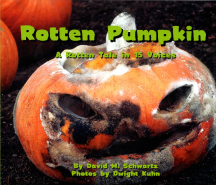 pumpkin-cover