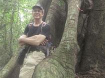 D-w-giant-treeBarroColoradoPanama